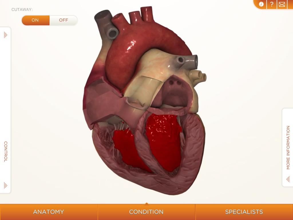 3d heart animation: