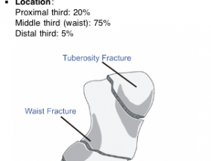 Ortho Traumapedia is a succinct orthopedic injury reference app