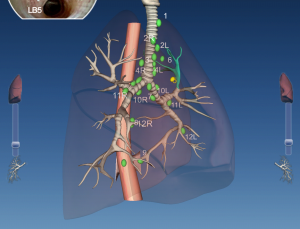 American College of Chest Physicians misses the mark with iPad apps