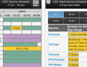 CDC hits home run with vaccine schedule app's mobile features