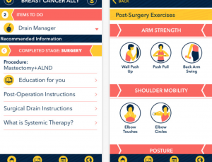 The University of Michigan Breast Cancer Ally App