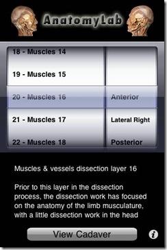 anatomy lab pic 3