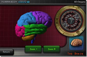 brain 3d 5