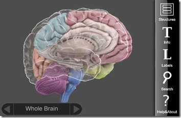 3d brain by cold spring harbor laboratory iphone app reviewbrain anatomy but i feel it has a greater potential, such as being used to education patients on different brain pathologies when trying to explain to