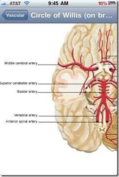 neuromind 2