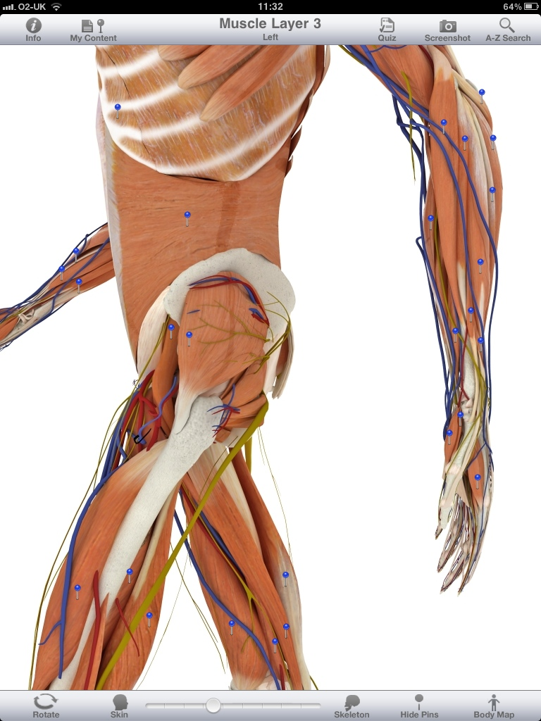 Pocket Body 3D, The way anatomy apps should be on the iPad