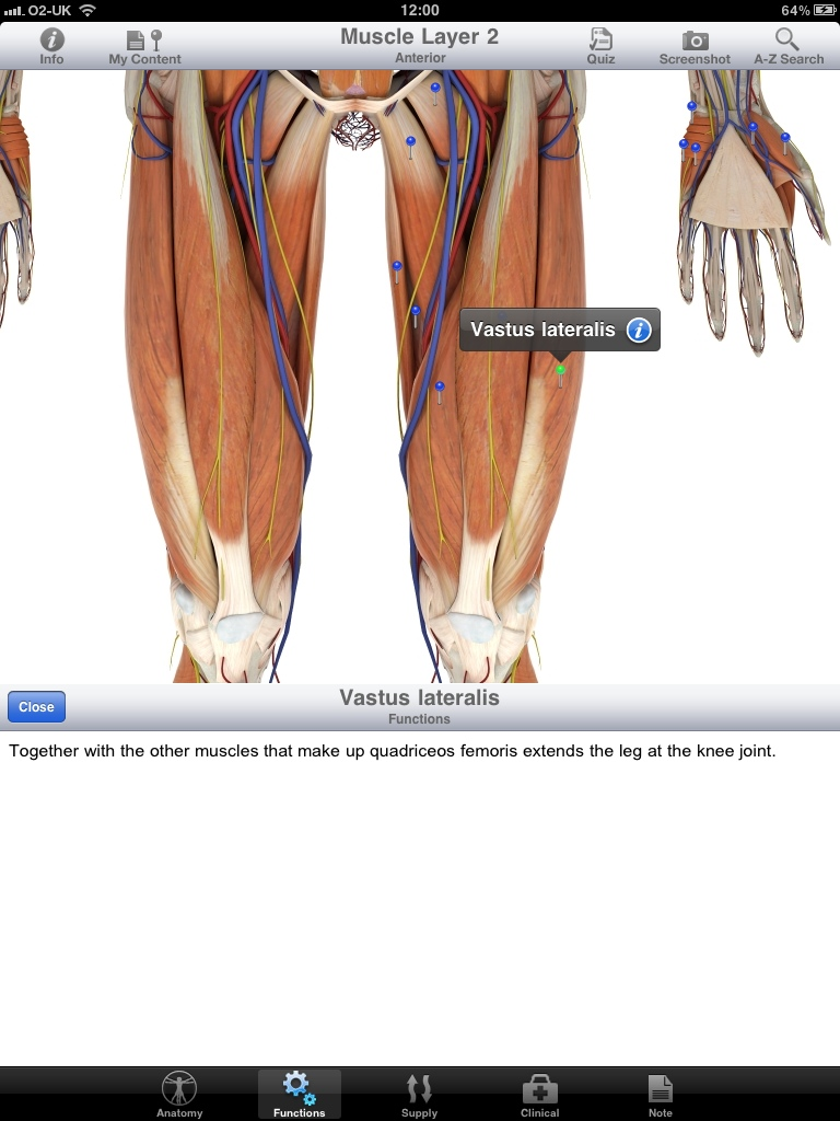 Anatomy Vs. Physiology: What's the Difference? - Study.com