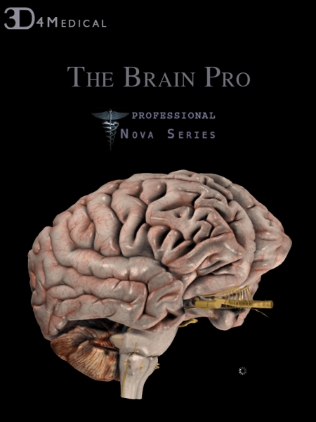 NOVA Series Proves Its Worth With Brain Pro iPad Anatomy App