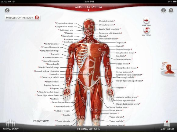 The human body anatomy app by dorling kindersley once a system is selected you will be taken to a full size annotated image it is then possible to explore each image with the standard gestures ccuart Images