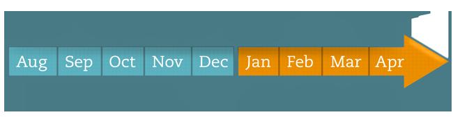 HealthBox Program Timeline