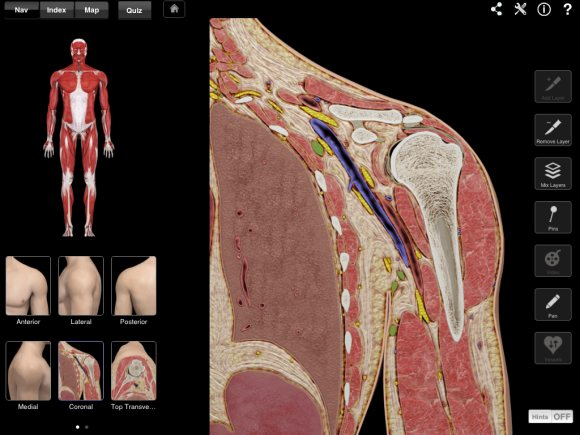 Shoulder Pro Iii One Of The Most Advanced Anatomy Apps Available