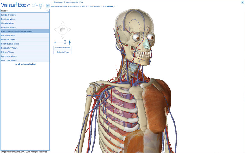 Top Anatomy App Visible Body Released In Mac App Store