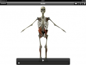 3D Consultation app delivers efficient orthopedic patient education from your iPad