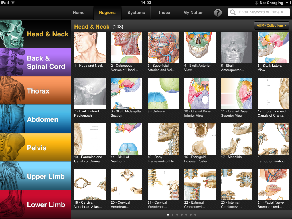 Netters Atlas of Human Anatomy iPad app is a powerful anatomical ...