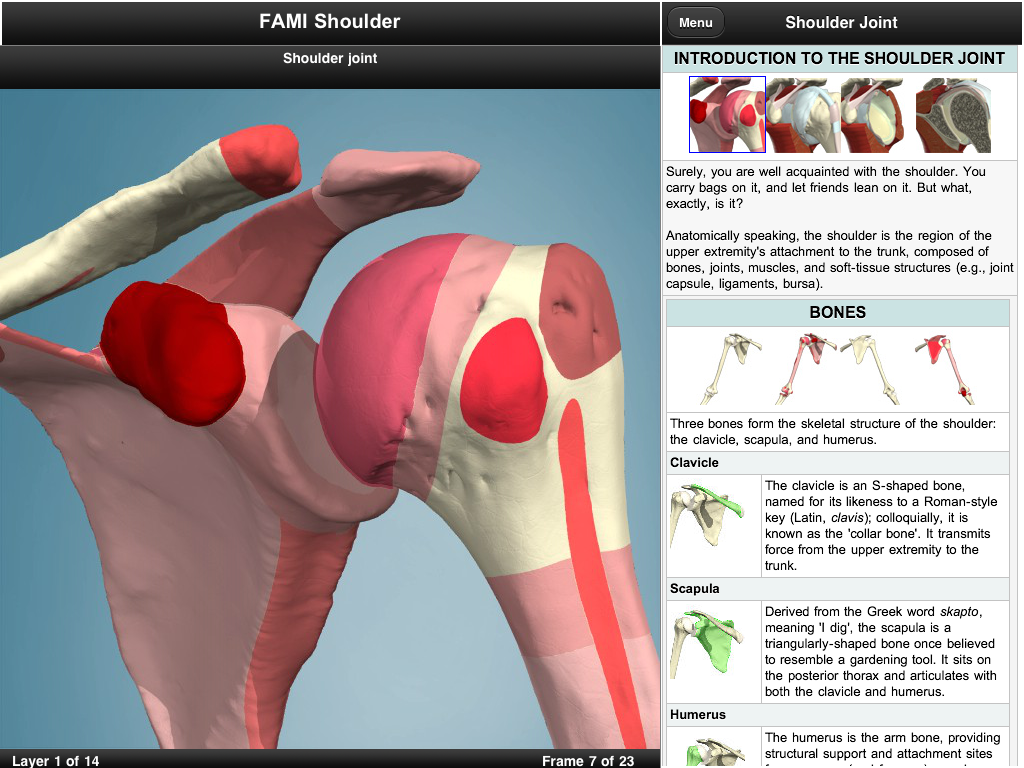Renowned 3D anatomy developer Primal Pictures releases first iPad app