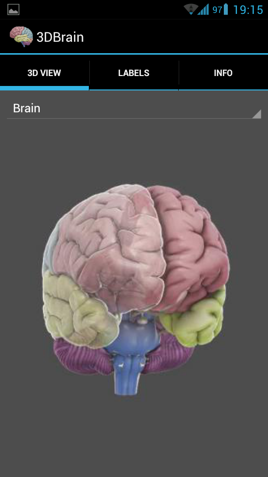 3D Brain is the Android app for a quick neuroanatomy review