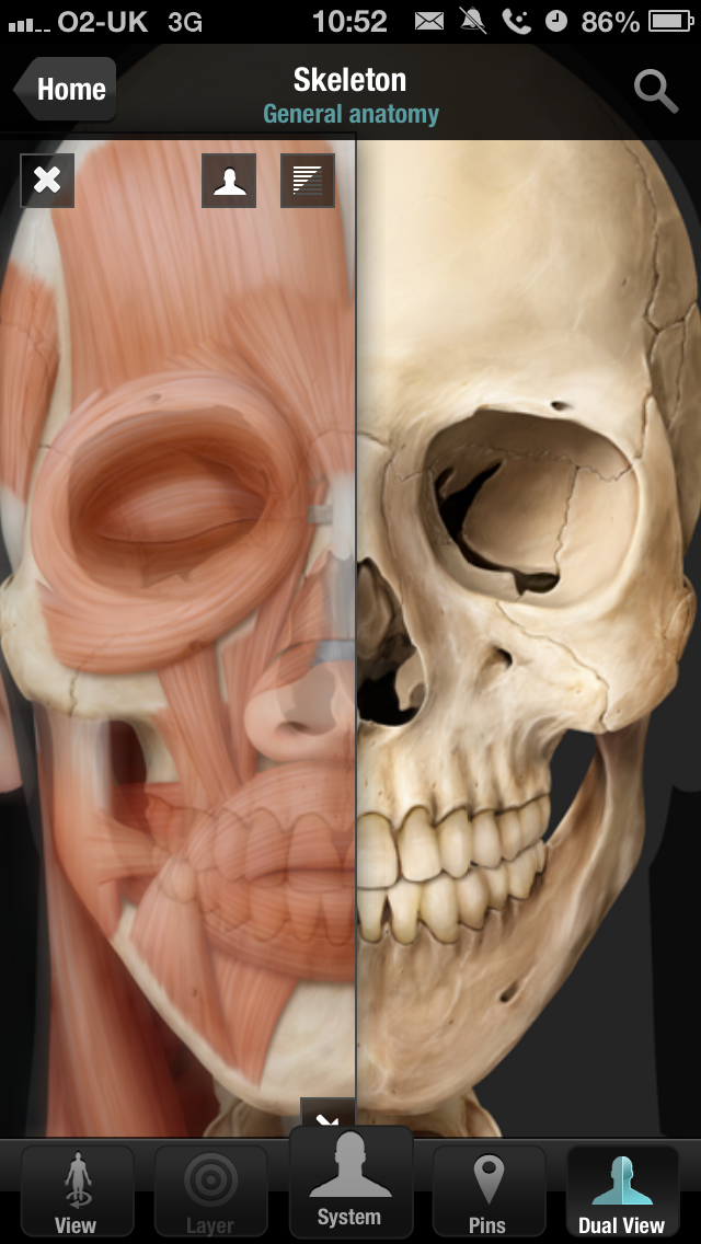 Virtual Human Body Iphone And Ipad Medical App Review