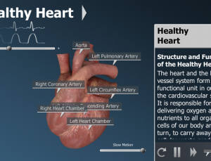 Bodyxq Heart app for Android looks interesting on the surface but has a hidden agenda