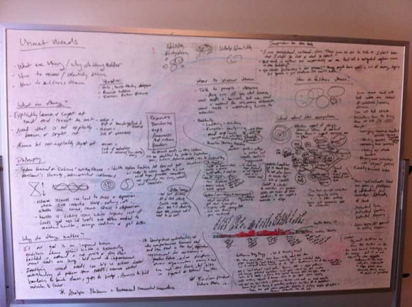 amy-cueva-whiteboard
