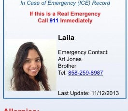 """ICEBlueButton, an """"In Case of Emergency"""" app solution for Android, does what it sets out to do"""