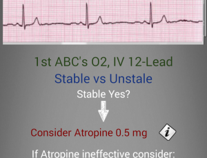 Critical Medical Guide for Android attempts to package large amount of medical content into an app for Emergency Providers