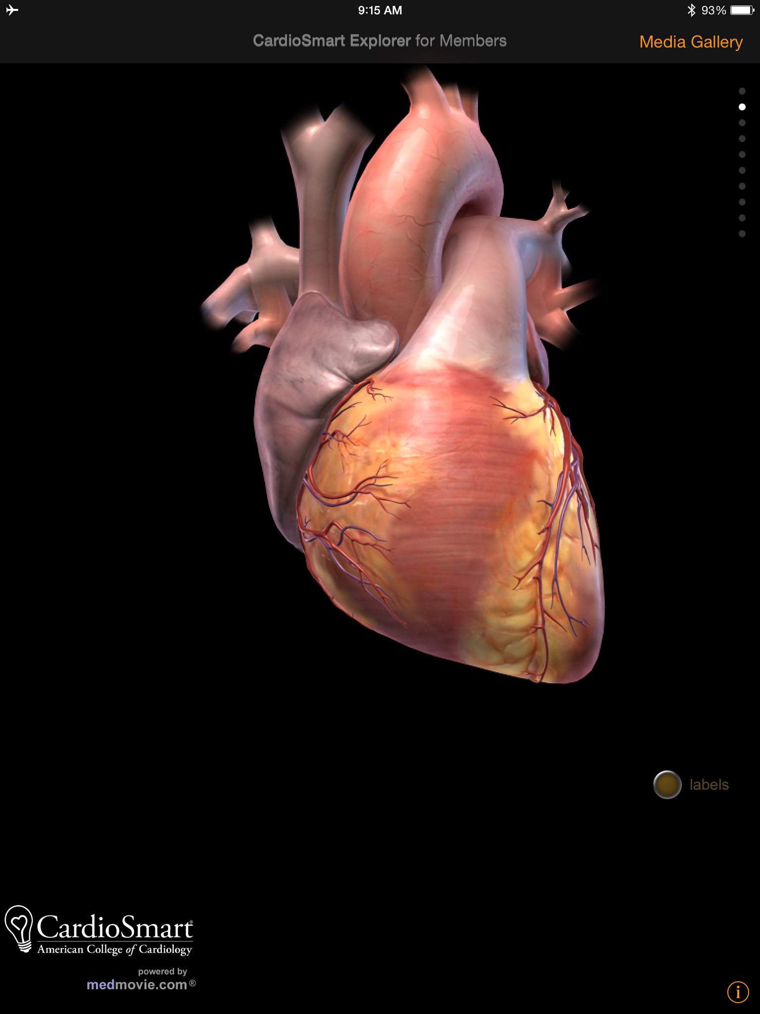 CardioSmart Explorer app review for iPad