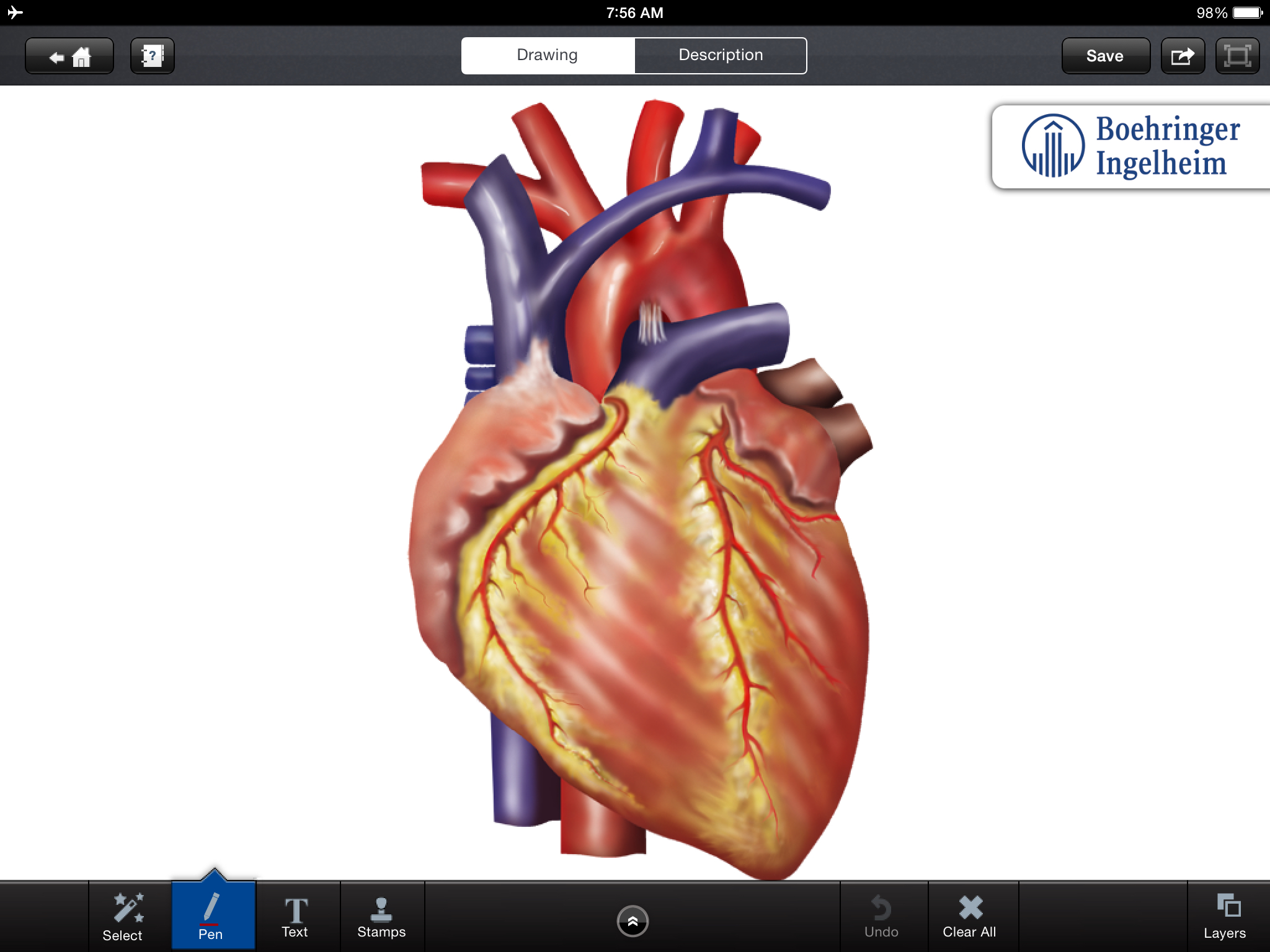 Anatomy App For Iphone