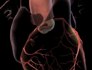 3 great apps for discussing heart disease with your patients