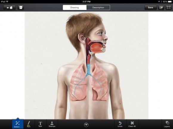 68635-6. asthma image