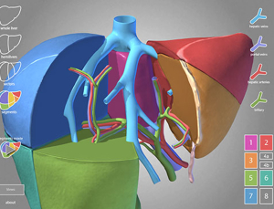 Surgical Anatomy of the Liver app is a fantastic review & education tool from Emory University