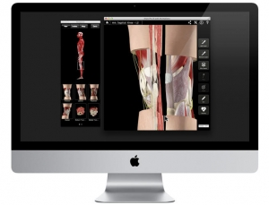 3D4Medical musculoskeletal anatomy apps like Knee Pro III use beautiful 3D models to enhance education