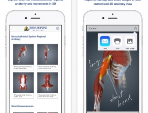 Review of Johns Hopkins Muscle Anatomy 3D App