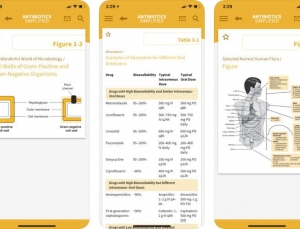 Antibiotics Simplified App:  Bridging Basic Pharmacotherapy and Infectious Disease Treatment